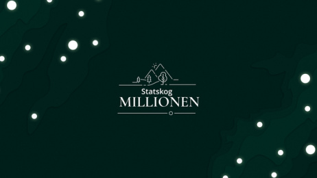 Statskog: Statskogmillionen, 7 Print Ad by Try/Apt Oslo