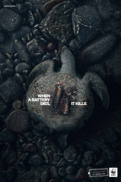WWF: Turtle Print Ad by Humano Bolivia