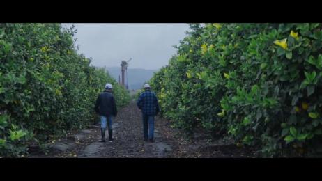 Sunkist: Here Film by Edelman New York