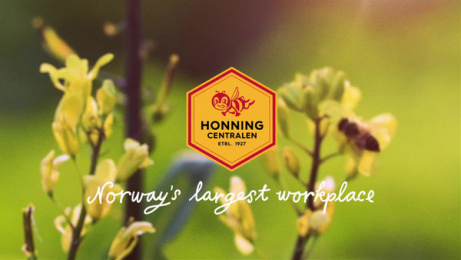 Honningcentralen (The Honey Central): Norway's largest workplace: Business Trip Film by Atyp Oslo