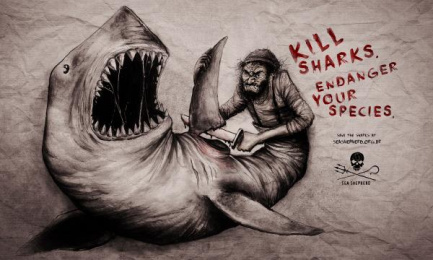 Sea Shepherd Conservation Society: Shark Print Ad by Heads Propaganda