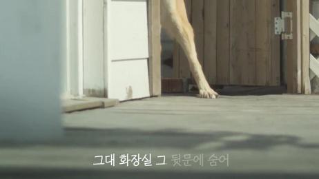 Kleenex MyBidet: Song of Sad Dogs Film by Innored