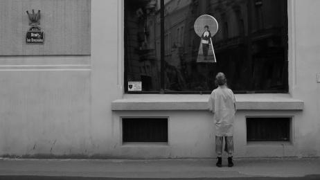 Entrance: Window Shop Installation Film by Gavrila&Asociatii Romania, studioset.tv