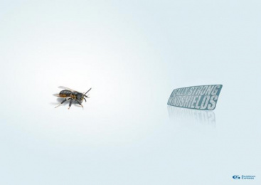 WINDSCREEN REPAIR: BEE Print Ad by Remo