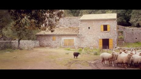 Stella Artois: Hans In Luck Film by Filmakademie Baden-Württemberg