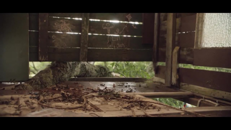 Pedigree: Treehouse [30 sec] Film by Colenso BBDO Auckland, Exit Films