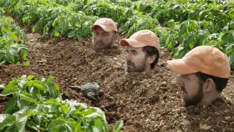 Zweifel: Life of a potato Film by Advico Y&R Zurich
