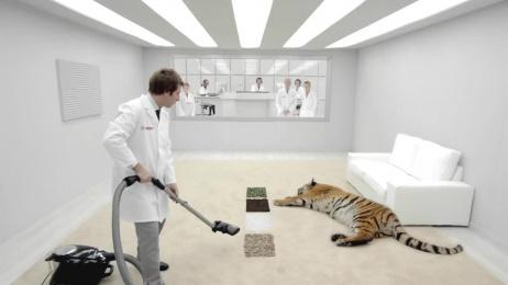 Bosch: Tiger Film by Iloveremos, Madrid