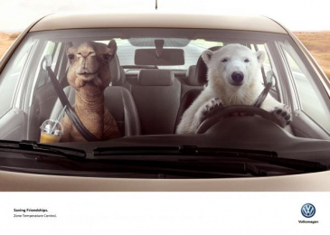 Volkswagen: Bear & Camel Print Ad by DDB Buenos Aires