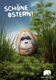 Zoo Cologne: Ape Print Ad by Preuss Und Preuss Germany