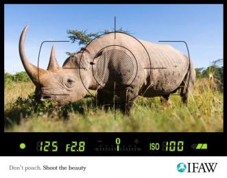 Ifaw: Anti-poaching, Rhino Print Ad by Scanad Kenya