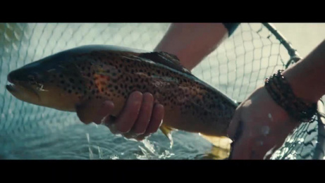 Lexus: Journeys in Taste Film by Conde Nast, LS Productions