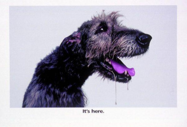Fiat Stilo Multiwagon: GREY DOG Print Ad by D'arcy