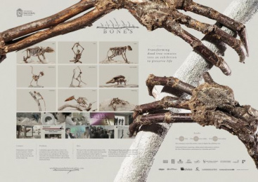 Natural History Museum/ NHM: Case study Print Ad by Havas Creative Columbia