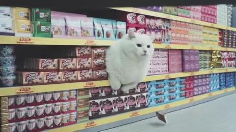 Netto Markendiscount: SupermarCats Film by Iconoclast, Jung Von Matt/Alster Hamburg