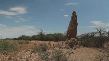 Yolo Condoms: Yolo Condoms Awareness Campaign Ambient Advert by Advantage Y&R Namibia