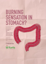 Fortis: Firecracker - Large Intestine Print Ad by Grey Mumbai