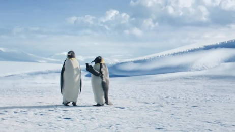 Geico: The Great Penguin Migration Film by Smuggler, The Martin Agency Richmond