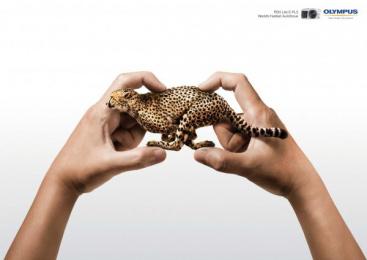 Olympus PEN Lite E-PL5: CHEETAH Print Ad by Proximity Singapore