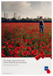 The Royal British Legion: Rethink Remembrance, 1 Print Ad by Unit 9 London, Y&R London