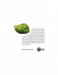 Colorado Parks and Wildlife: Conservation Starts Small, 3 Print Ad by Amelie Company Denver