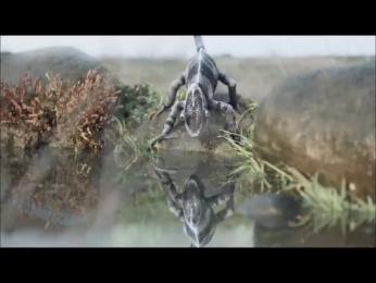 Volkswagen Jetta: Chameleon Film by DDB Mudra Group Mumbai