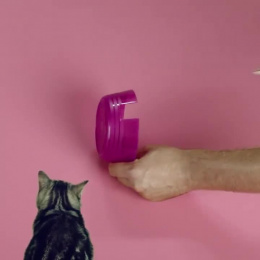 Whiskas: The Clock Feeder Film by Clemenger BBDO Sydney, The Glue Society