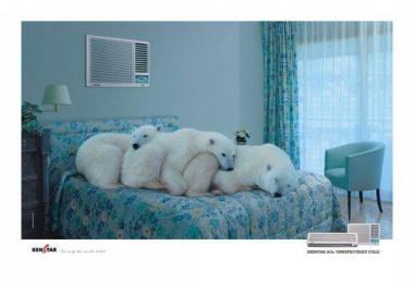 Kenstar: POLAR BEARS Print Ad by Quadrant Communications