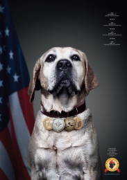 National Disaster Search Dog Foundation: Lucy Print Ad by Y&R New York