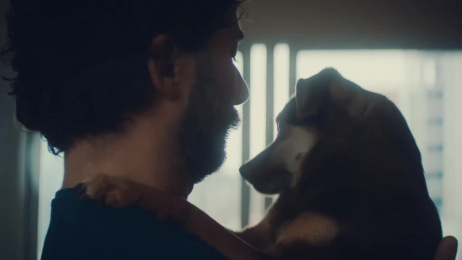 Pedigree: Pedigree Film by ALMAP BBDO Brazil