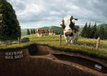 Oral-b: Cow Print Ad by Publicis Yorum Istanbul