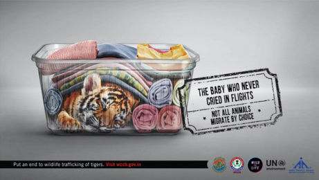UNEP: Forced Migration, 1 Print Ad by Ogilvy & Mather Mumbai