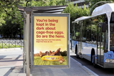 The Happy Egg Company: Bus Shelter Outdoor Advert by Supermoon