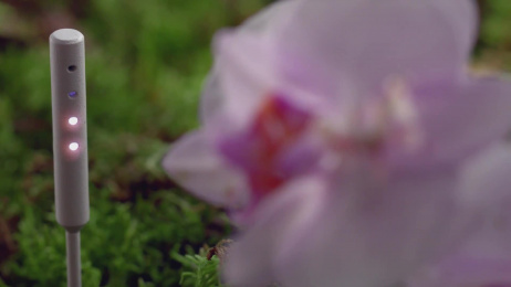 Shiseido: All Things Beautiful Come From Nature Film by Blinkink, Wieden + Kennedy Tokyo