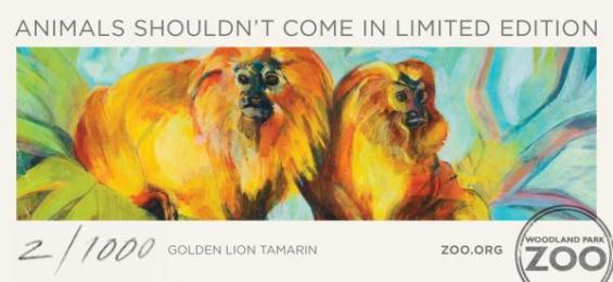 Woodland Park Zoo: Golden Lion Tamarin Print Ad by Wongdoody