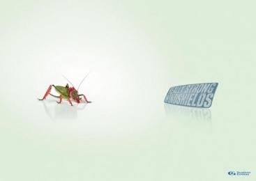 WINDSCREEN REPAIR: GRASSHOPPER Print Ad by Remo
