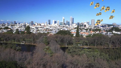 Western Power: Directing the Power of Perth Film by 303Lowe Sydney, The Office of John Cheese