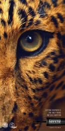 Lavera: Leopard Print Ad by Rabarba
