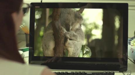 H&R Block: Koala Film by Saatchi & Saatchi Sydney, Scoundrel
