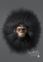 Mitsubishi PHEV: Chimp Print Ad by Africa Sao Paulo