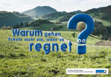 Neue Aargauer Bank: Sheep Print Ad by Euro Rscg Zurich