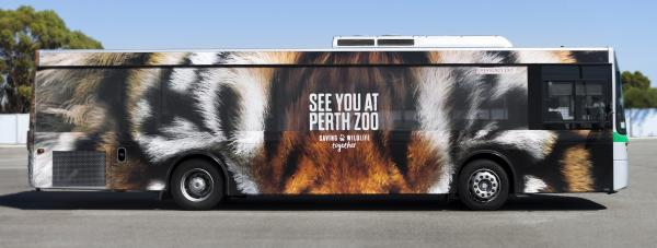 Perth Zoo: See You At Perth Zoo Outdoor Advert by Gatecrasher Advertising