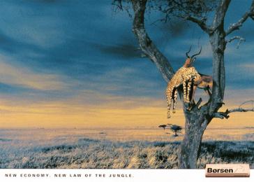 Borsen: LEOPARD Print Ad by Umwelt