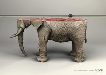 Ifaw/international Fund Of Animal Welfare: Elephant Print Ad by Y&R Paris