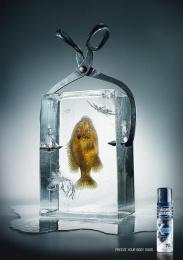 Right Guard Deodorant: FISH Print Ad by TBWA\ Dusseldorf