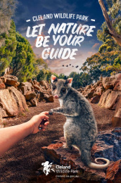 Cleland Wildlife Park: Possum Print Ad by Showpony Advertising