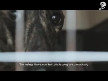 OFFF Festival: LOLITA Film by Villar & Rosas