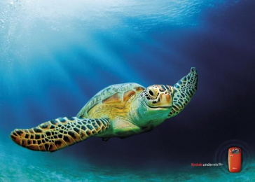PLAYSPORT UNDERWATER CAMERA: TURTLE Print Ad by Ogilvy & Mather London