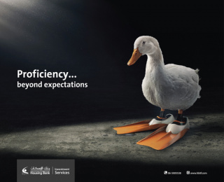 Housing Bank for Trade and Investment: Beyond Expectations: Duck Outdoor Advert by Adpro Communications