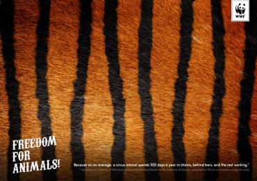 WWF: Tiger Print Ad by Friends\TBWA Bucharest